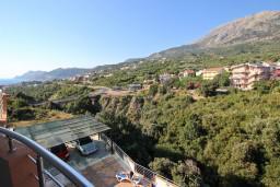 Вид. Черногория, Добра Вода : Апартамент для 3 человек, с отдельной спальней, с террасой