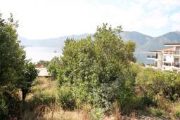 Вид на море. Черногория, Ораховац : Апартамент с отдельной спальней, с балконом с видом на море, 80 метров до пляжа