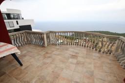 Балкон. Черногория, Кримовица : Апартамент с отдельной спальней, с балконом с видом на море