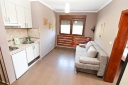 Кухня. Черногория, Дженовичи : Современный апартамент с отдельной спальней