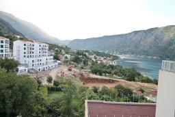 Вид. Черногория, Доброта : Современный апартамент для 4-5 человек, с отдельной спальней, с балконом с видом на море
