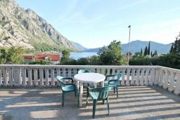 Черногория, Ораховац : Студия для 2-3 человек, с террасой с видом на море, 50 метров до пляжа