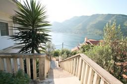 Вид на море. Черногория, Лепетане : Апартамент с отдельной спальней, с террасой с видом на море, 40 метров до пляжа