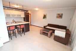 Гостиная. Черногория, Доброта : Современный апартамент с отдельной спальней, с террасой с видом на море