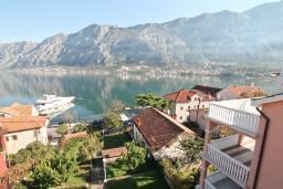 Вид на море. Черногория, Прчань : Студия для 3 человек, с балконом с шикарным видом на море, 20 метров до пляжа