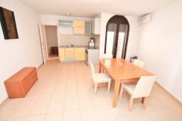 Кухня. Черногория, Бигова : Апартамент с отдельной спальней, с большой террасой с шикарным видом на море, 20 метров до пляжа