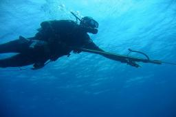 Подводная охота : Черногория