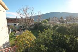 Вид. Черногория, Дженовичи : Апартамент с отдельной спальней, с террасой, 30 метров до моря