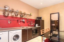 Кухня. Черногория, Котор : Апартамент для 6-8 человек, с 3-мя отдельными спальнями, с просторной гостиной, с ванной комнатой с джакузи, с большой террасой