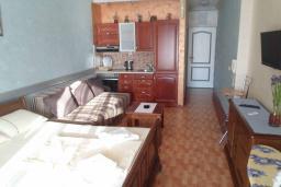 Студия (гостиная+кухня). Черногория, Рафаиловичи : Студио №0 с балконом и видом на море