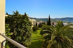 Вид. Черногория, Бечичи : Стандартный номер с видом на сад