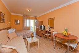 Студия (гостиная+кухня). Черногория, Петровац : Номер студия с балконом