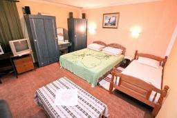 Студия (гостиная+кухня). Черногория, Котор : Студия с террасой с шикарным видом на море, 100 метров до пляжа
