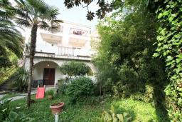 Фасад дома. Черногория, Игало : Дом с 2-мя гостиными, с 4-мя отдельными спальнями, с 2-мя ванными комнатами, с фантастическим садом, с местом для барбекю, Wi-Fi