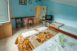 Студия (гостиная+кухня). Черногория, Зеленика : Студия для 3 человек