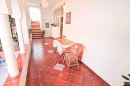 Терраса. Черногория, Доня Ластва : Апартамент в 20 метрах от пляжа, с гостиной и отдельной спальней, для 4-5 человек