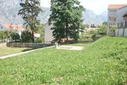 Территория. Черногория, Столив : Трехэтажный каменный дом в 20 метрах от пляжа, с большой гостиной-столовой, с двумя кухнями, с шестью отдельными спальнями и ванными комнатами, с сауной, с большой зеленой территорией