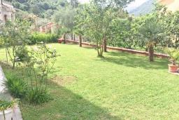Территория. Черногория, Столив : Этаж дома в Которе (Столив), с 2-мя отдельными спальнями, с большой гостиной, с зеленым двориком, с террасой, стиральная машина, Wi-Fi, несколько парковочных мест, 100 метров до пляжа.