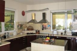 Кухня. Черногория, Утеха : Роскошная вилла на берегу моря, с бассейном, бильярдом, двумя гостиными, кухней-столовой, четырьмя отдельными спальнями, тремя ванными комнатами, гаражом.