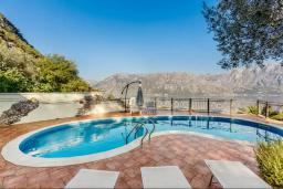 Swimming pool. Montenegro, Muo : Villa with 6 bedrooms in Muo for 12 guests