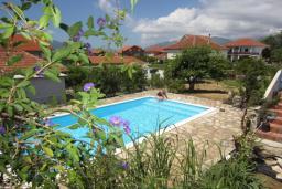 Бассейн. Черногория, Тиват : Двухэтажная вилла с бассейном, гостиная, 4 спальни, 3 ванные комнаты, большая терраса, место для барбекю, Wi-Fi