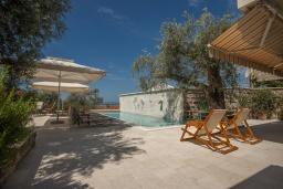Территория. Черногория, Святой Стефан : Вилла с бассейном и большой террасой, гостиная, 3 спальни, 3 ванные комнаты, Wi-Fi