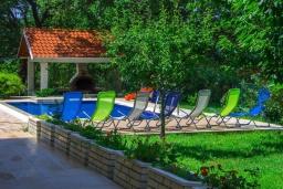 Бассейн. Черногория, Зеленика : Двухэтажная вилла с бассейном и зеленой территорией, 3 гостиные, 6 спален, 3 ванные комнаты, Wi-Fi