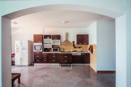 Кухня. Черногория, Будва : Апартамент с гостиной, двумя спальнями, двумя ванными комнатами, 4 балкона с шикарным видом на море