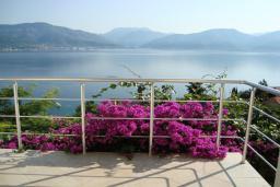 Вид на море. Черногория, Крашичи : Студия в 100 метрах от пляжа, с балконом и шикарным видом на море