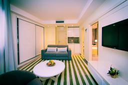 Гостиная. Черногория, Рафаиловичи : Апартаменты с 1 спальней и видом на горы