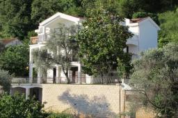 Фасад дома. Черногория, Будва : Вилла с большой гостиной, 9 спален, 5 ванных комнат, гараж, Wi-Fi
