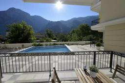 Терраса. Черногория, Котор : Апартамент в 20 метрах от пляжа, с гостиной, отдельной спальней и террасой