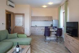 Гостиная. Черногория, Бечичи : Современный апартамент с гостиной, отдельной спальней, террасой с зеленой лужайкой и видом на море, в комплексе с большим бассейном