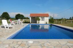 Бассейн. Черногория, Велика плажа : Уютная вилла с бассейном и зеленым двориком, 5 спален, барбекю, парковка, Wi-Fi