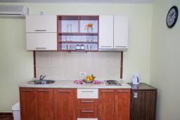 Кухня. Черногория, Столив : Апартамент в 20 метрах от пляжа, с гостиной, отдельной спальней и террасой