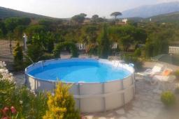 Бассейн. Черногория, Кримовица : Прекрасная вилла с бассейном и зеленой территорией, 4 спальни, 2 ванные комнаты, парковка, Wi-Fi