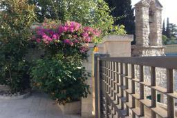 Территория. Черногория, Лепетане : Прекрасная вилла с бассейном и зеленым двориком, 4 спальни, 3 ванные комнаты, парковка, Wi-Fi