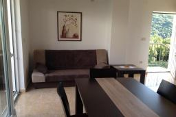 Гостиная. Черногория, Зеленика : Прекрасная вилла с бассейном и зеленым двориком с барбекю, 2 гостиные, 3 спальни, 2 ванные комнаты, парковка, Wi-Fi