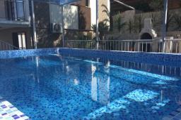 Бассейн. Черногория, Крашичи : Прекрасная вилла с бассейном и зеленым двориком, 40 метров до пляжа, 5 спален, 5 ванных комнат, барбекю, парковка, Wi-Fi
