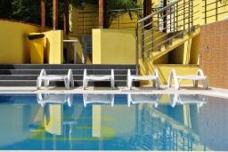 Бассейн. Черногория, Герцег-Нови : Прекрасная вилла с бассейном, детской площадкой и барбекю, 4 гостиные, 6 спален, 6 ванных комнат, парковка, Wi-Fi