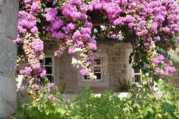 Территория. Черногория, Петровац : Люкс апартамент в Петроваце с двумя отдельными спальнями и неповторимым видом на море