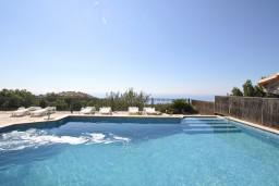 Swimming pool. Montenegro, Sveti Stefan : Villa with 4 bedrooms in Sveti Stefan for 8 guests