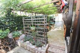 Территория. Черногория, Булярица : Деревянный домик с кухней и двумя отдельными спальнями
