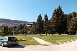 Парк и лес вокруг виллы Тито (Titova Vila) в Игало