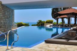 Бассейн. Avala Resort 4+* в Будве