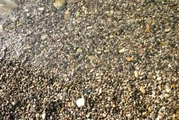 Пляж Сент Тропе / Saint Tropez в Баошичи