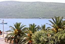 Вид на море. Черногория, Кумбор : Современный апартамент LUNA в 15 метрах от моря