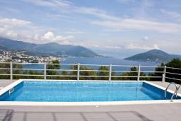 Бассейн. Черногория, Герцег-Нови : Дом с бассейном с 3-мя отдельными спальнями, с 2-мя кухнями, с шикарным видом на море