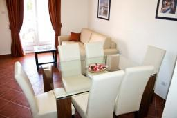 Living room. Montenegro, Baosici : Apartment with 1 bedroom in Baosici