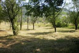 Земельный участок в Грахово – Никшич, площадью 8000м2. в Которе